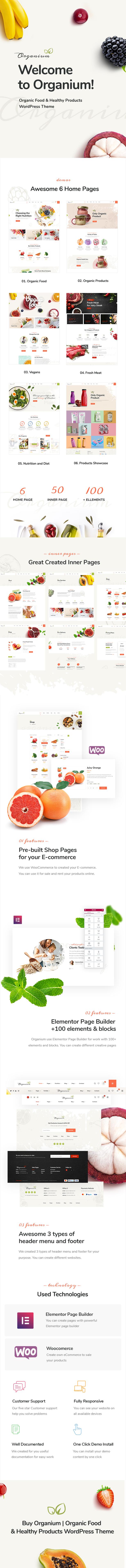 Organium | Organic Food Products WordPress Theme - 1